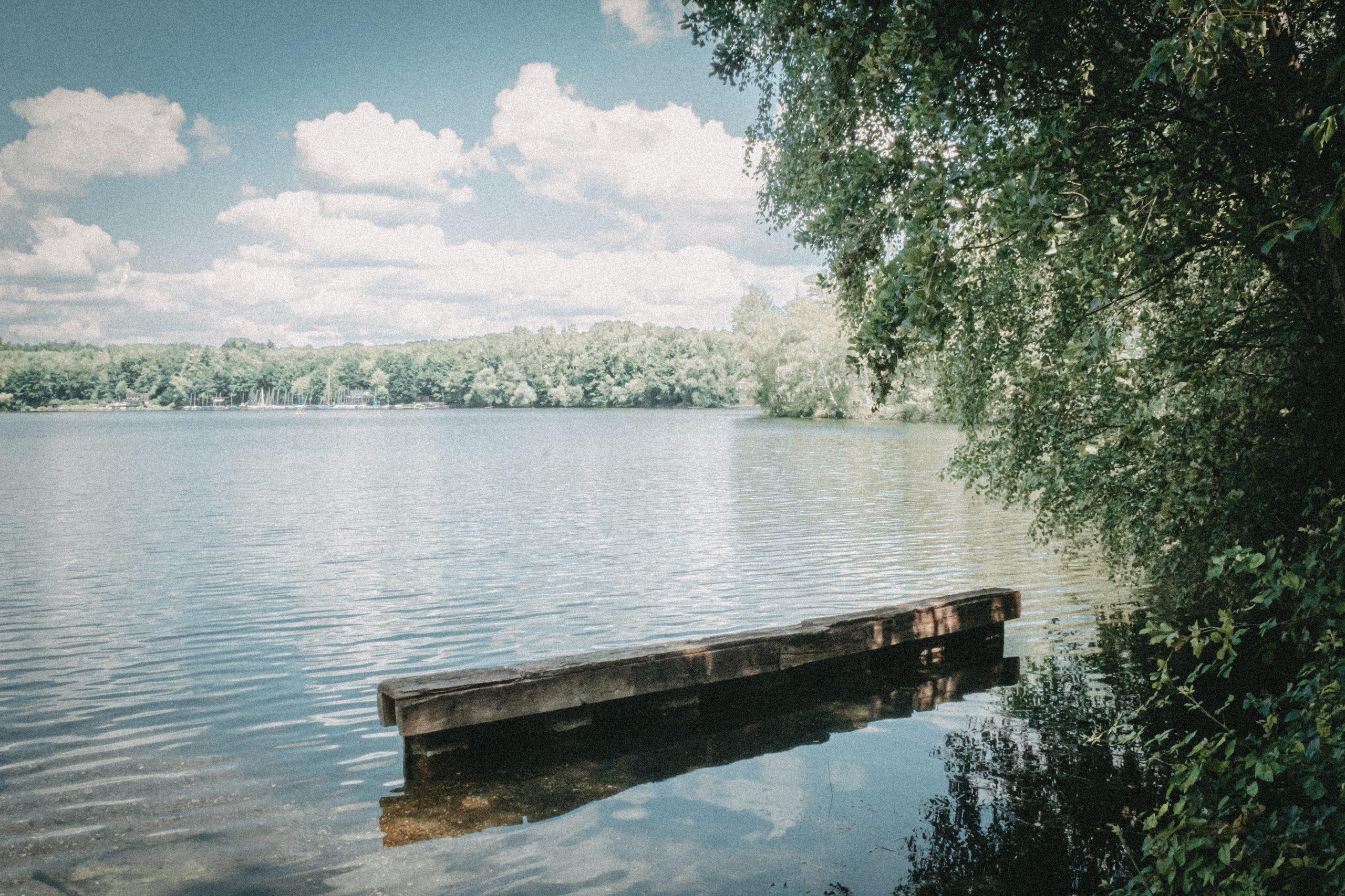 Ein Stück Holz auf dem Heider Bergsee